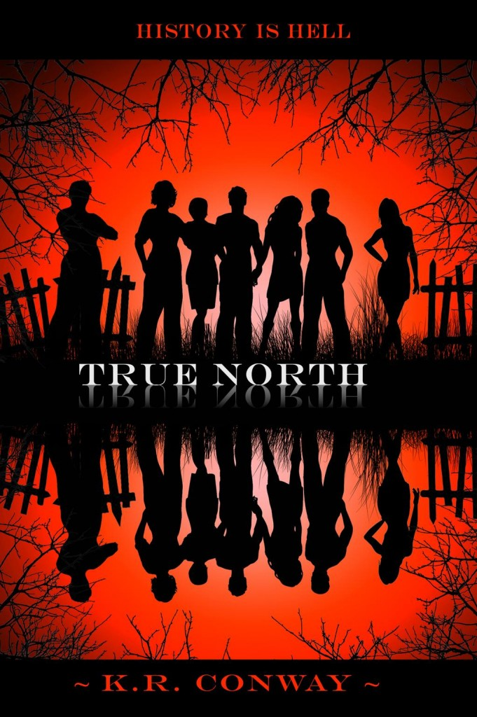 Cover Reveal: 'True North' by K.R. Conway